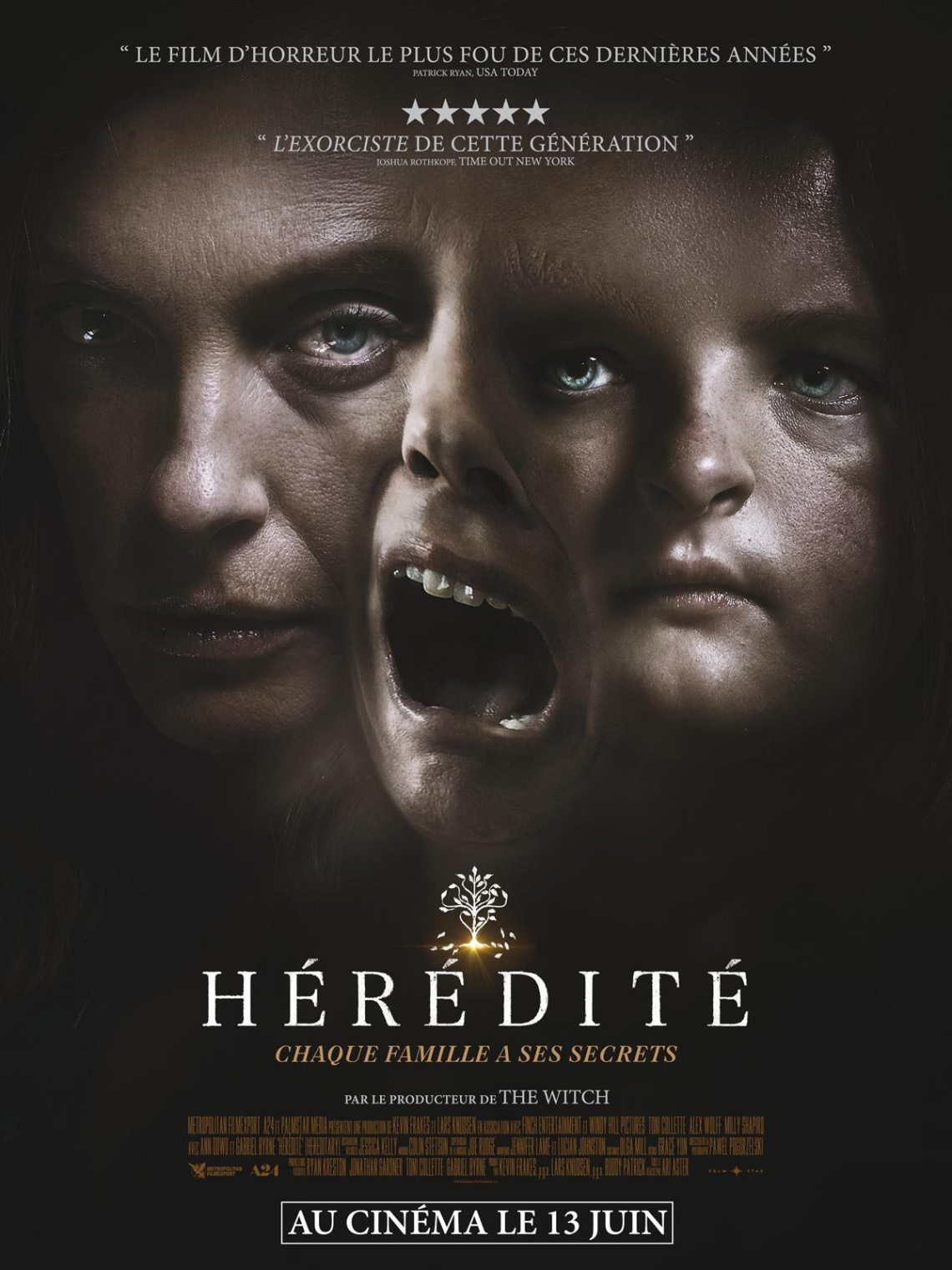 Hereditary-New-French-Poster.jpg